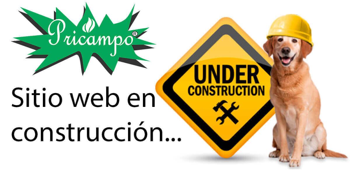 Imágen SITIO WEB EN CONSTRUCCIÓN